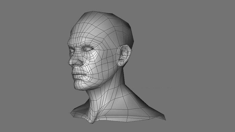 CGI wireframe of human head